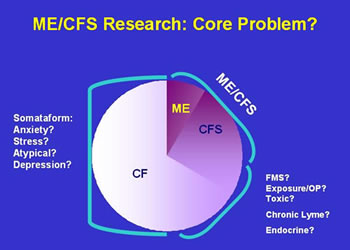 Figure 5. ME/CFS Research: Core Problem?