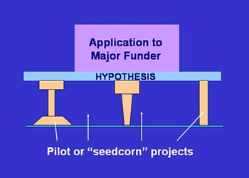 Figure 8. Pilot studies or seedcorn studies