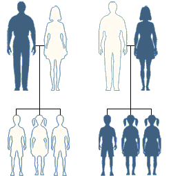 Mitochondriaal_DNA_loa
