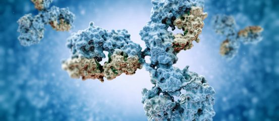 The role of autoantibodies in ME/CFS
