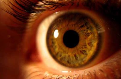 Eyes: pain, sensitivity and focus
