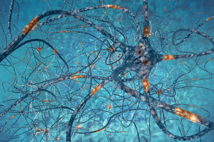 Neuromuscular strains