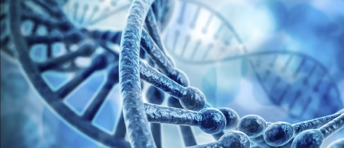 Genetic variation affects adrenergic receptors